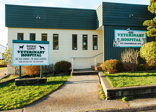 Pacific Coast Veterinary Hospital | Prince Rupert, BC
