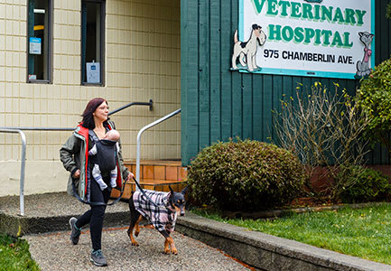 Our Commitment | Pacific Coast Veterinary Hospital | Prince Rupert, BC