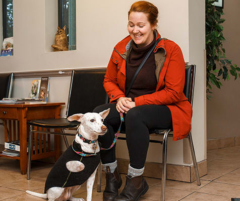 About Pacific Coast Veterinary Hospital | Prince Rupert, BC